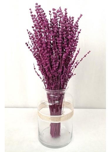 Kuru Çiçek Deposu Kuru Çiçek Şoklanmış Dökülmeyen Gerçek Pembe Lavanta Demeti Pembe